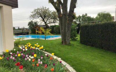 Aménagement paysager à La Bresse